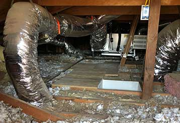 Crawl Space Cleaning | Attic Cleaning Thousand Oaks, CA
