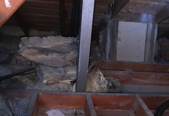 Rodent Proofing Project | Attic Cleaning Thousand Oaks, CA